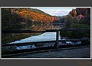 Harasovský rybník v Kokořínském údolí