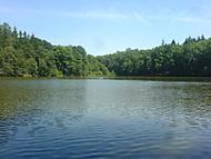 Štiřínský rybník