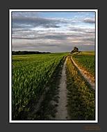 Cestička do polí