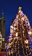 Vánoční stromek na náměstí v Klatovech