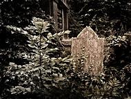 Z bílinského hřbitova...
