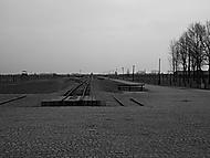 Auschwitz Birkenau-pohled na hlavní rampu