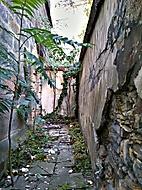stary vchod
