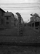 Koncentrační tábor v Osvětimi...