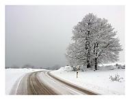 Zimní cestování