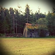 Kolna u lesa