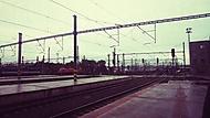 Deštivé letní ráno na trati