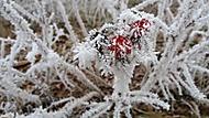 kousek zimy 2 (sunbeam1986) – Samsung Galaxy J5