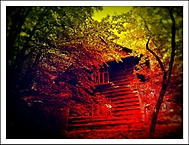 Cabin in the Woods. (Ivan 76) - Samsung Galaxy S III