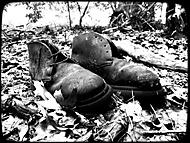 Nizozemská bota