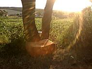 Posedenie pri západe slnka
