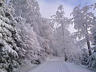 Zima dokáže být nádherná