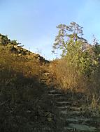 Mizející schody