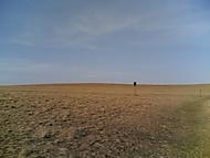 Mohelenská hadcová poušť