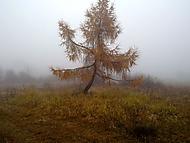 Typické novembrové počasie :)
