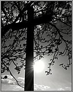slunce vs kříž