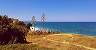 Na ostrově Kos