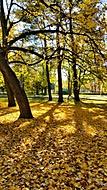 .:: Podzim ve městě ::..