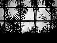 Co vídají sloni.. (okno pavilonu chobotnatců v ZOO Liberec)