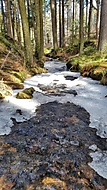 ..:: Last Bits of Winter ::..