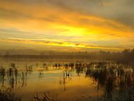 Východ slunce (Rockefeler) – Nokia N70