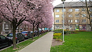Ostrava v barvách