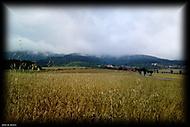 Vizovské vrchy