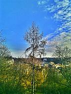 C360_2012-03-0416-14-37_3_Photo360