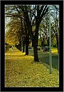 Podzimni ulice