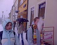 Snehova vločka