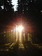 východ slunce (trent) – Sony Ericsson K750i