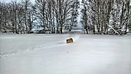Sníh.. všude sníh