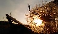 při západu slunce...