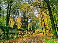Podzim u hřbitova