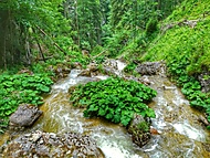 Vodopády Medvědí soutěsky