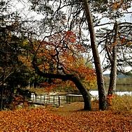 Podzim v Jedovnicích
