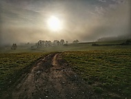 Ráno v mlze...