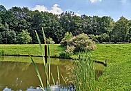 rybník Kuňka