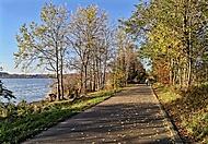 procházka kolem Olešné