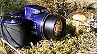 Nikon v lese 02