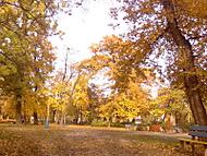 Park Komenského