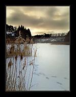 Zima na rybníce