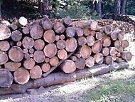 srovnané dřevo na zimu