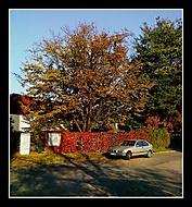 Podzim, jeho barvy a krásy