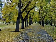 Podzimní pohled...