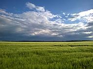 Krajina na Opavsku