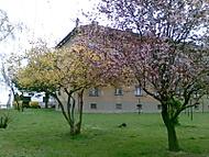Barvy zacatku jara