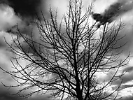 První foto s iPhonem 6 plus -  autumn landscape