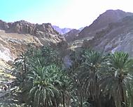 dovolená 2006