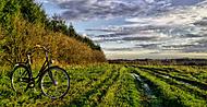 Podzim na kole